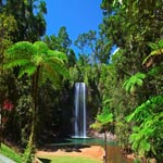 tour_of_australia_to_Cairns_waterfalls