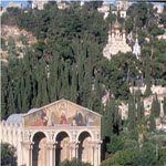 cruise_ to_ israel_from_ limassol_garden_gethsemani